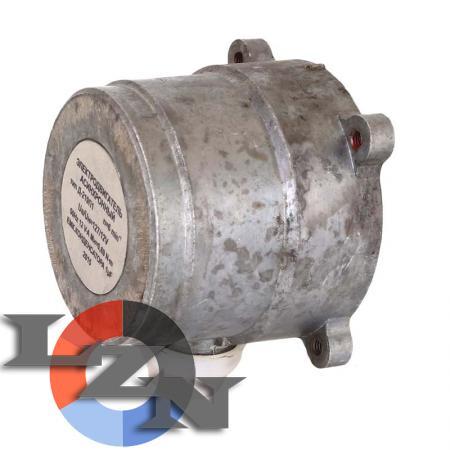 Электродвигатель асинхронный конденсаторный Д-219П1 - фото №2